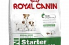 Royal Canin Mini Starter Сухой корм Роял Канин Мини Стартер